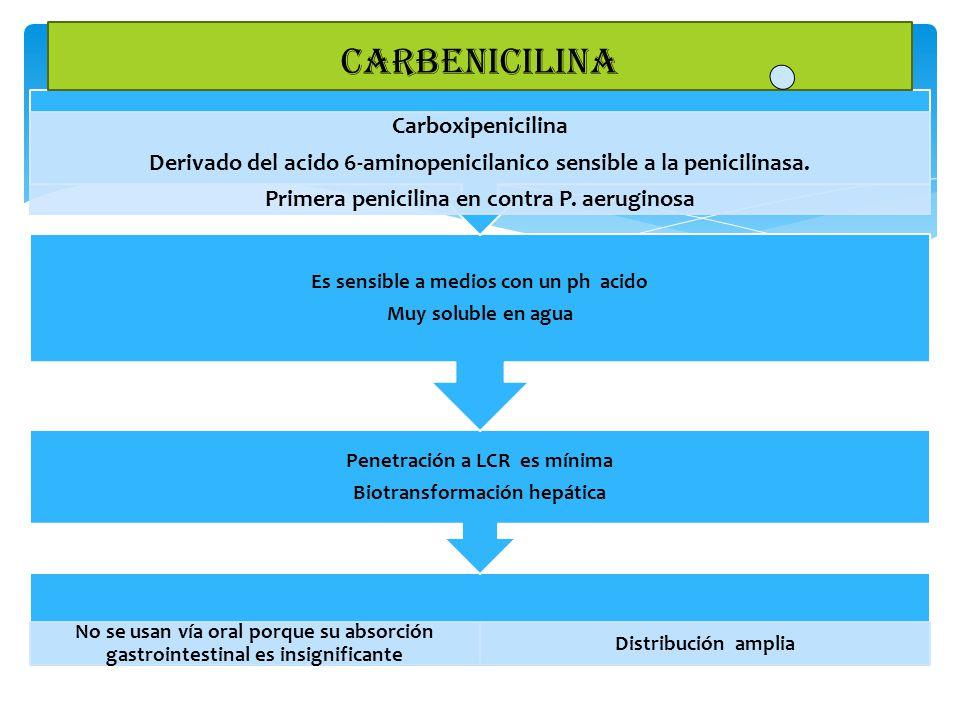carbenicilina Carboxipenicilina