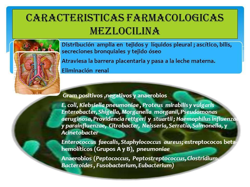 CARACTERISTICAS FARMACOLOGICAS MEZLOCILINA