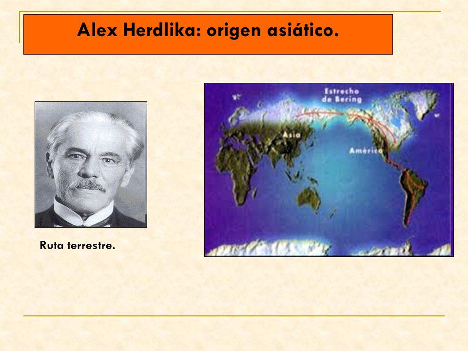 Alex Herdlika: origen asiático.