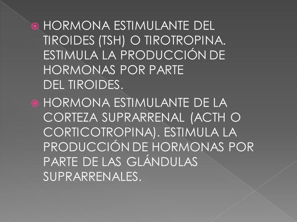 HORMONA ESTIMULANTE DEL TIROIDES (TSH) O TIROTROPINA