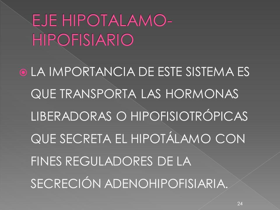 EJE HIPOTALAMO-HIPOFISIARIO