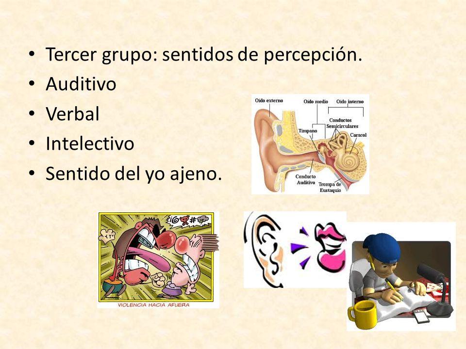 Tercer grupo: sentidos de percepción.
