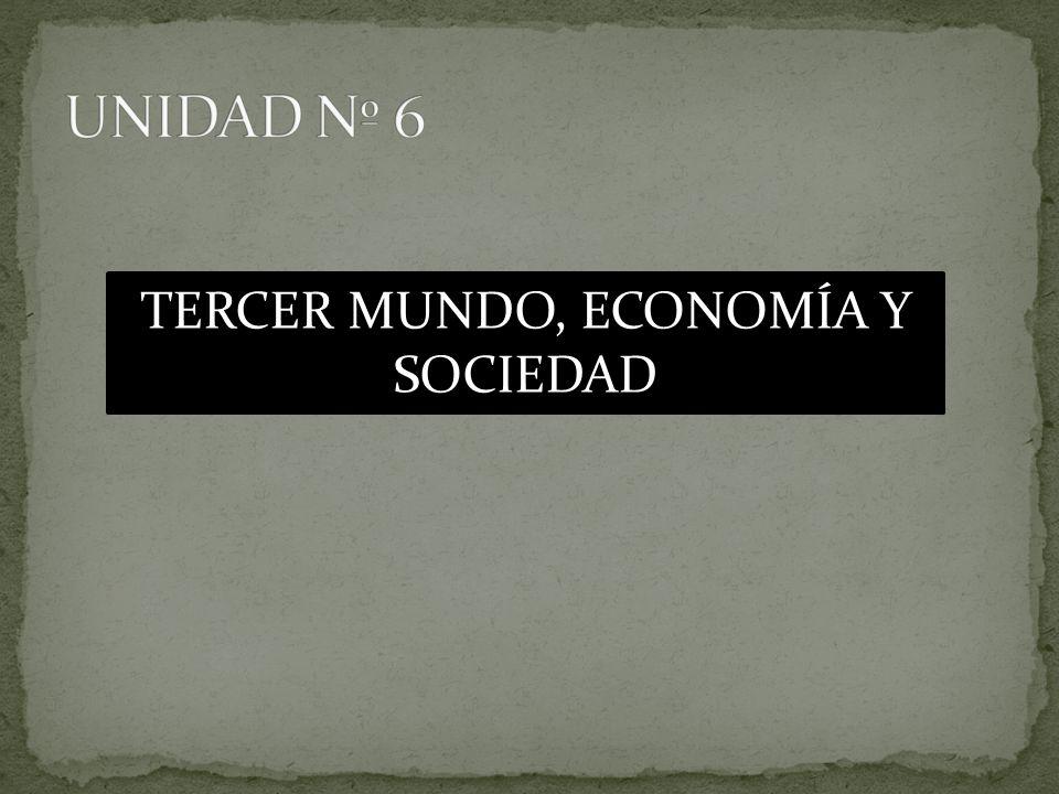 TERCER MUNDO, ECONOMÍA Y SOCIEDAD