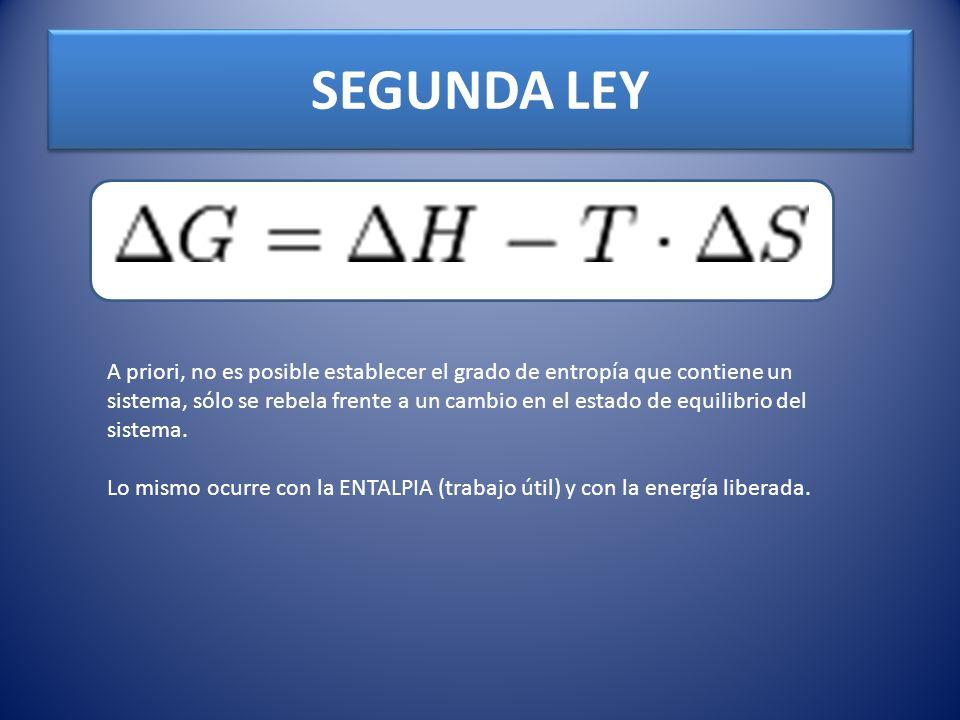 SEGUNDA LEY