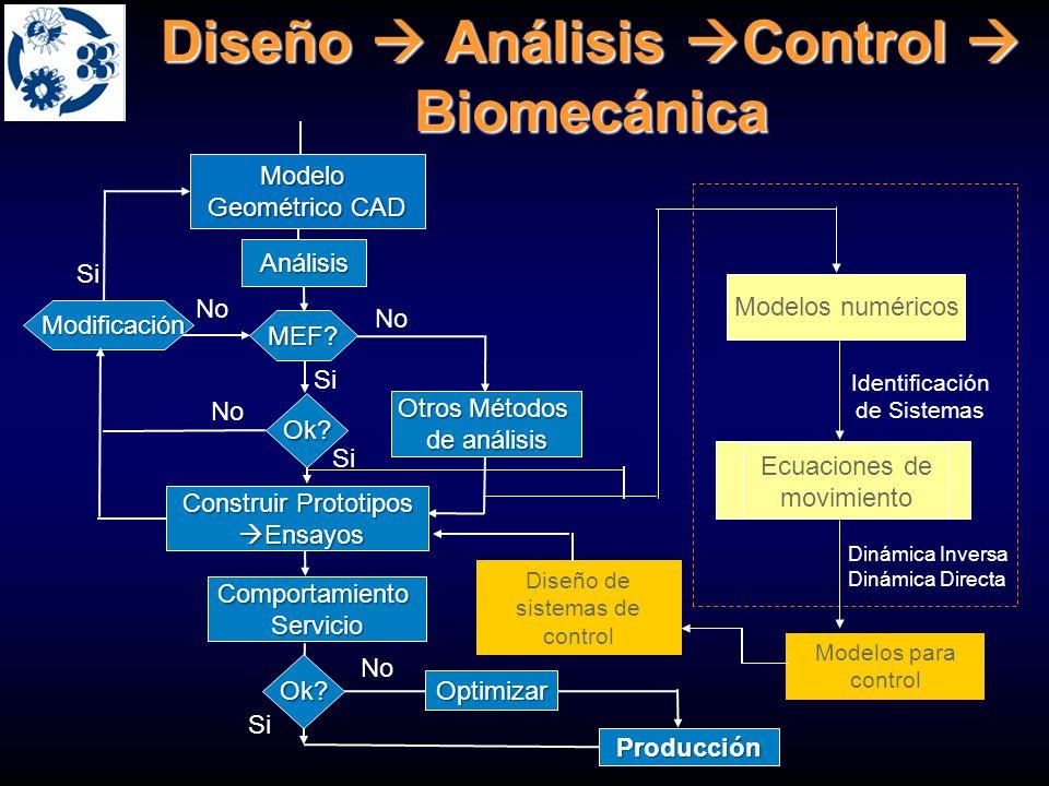 Ingeniería Mecánica Biomecánica Traumatología y la Ortopedia