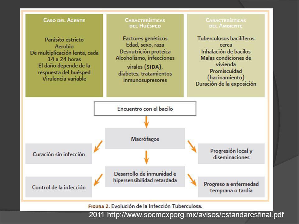 2011 http://www.socmexporg.mx/avisos/estandaresfinal.pdf