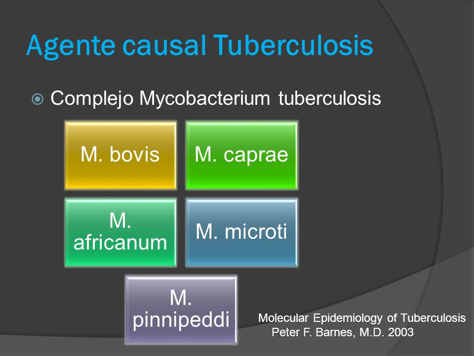 Agente causal Tuberculosis