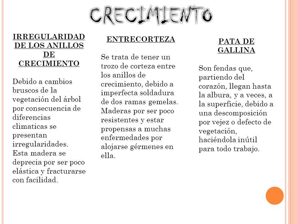 IRREGULARIDAD DE LOS ANILLOS DE CRECIMIENTO