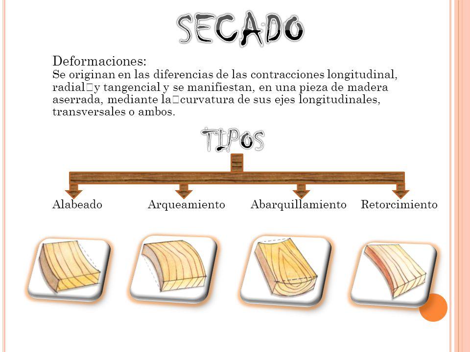 SECADO TIPOS Deformaciones: