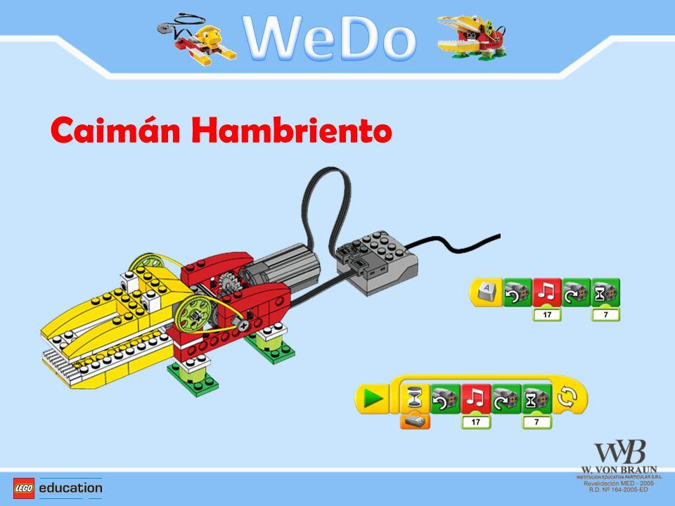 WeDo Caimán Hambriento