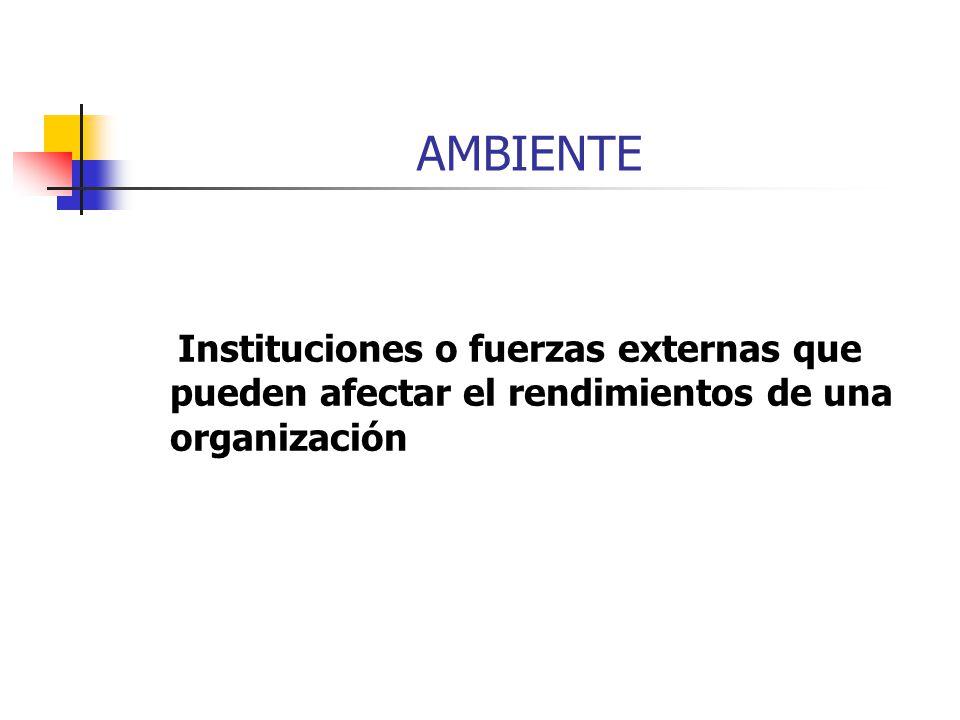 AMBIENTE Instituciones o fuerzas externas que pueden afectar el rendimientos de una organización