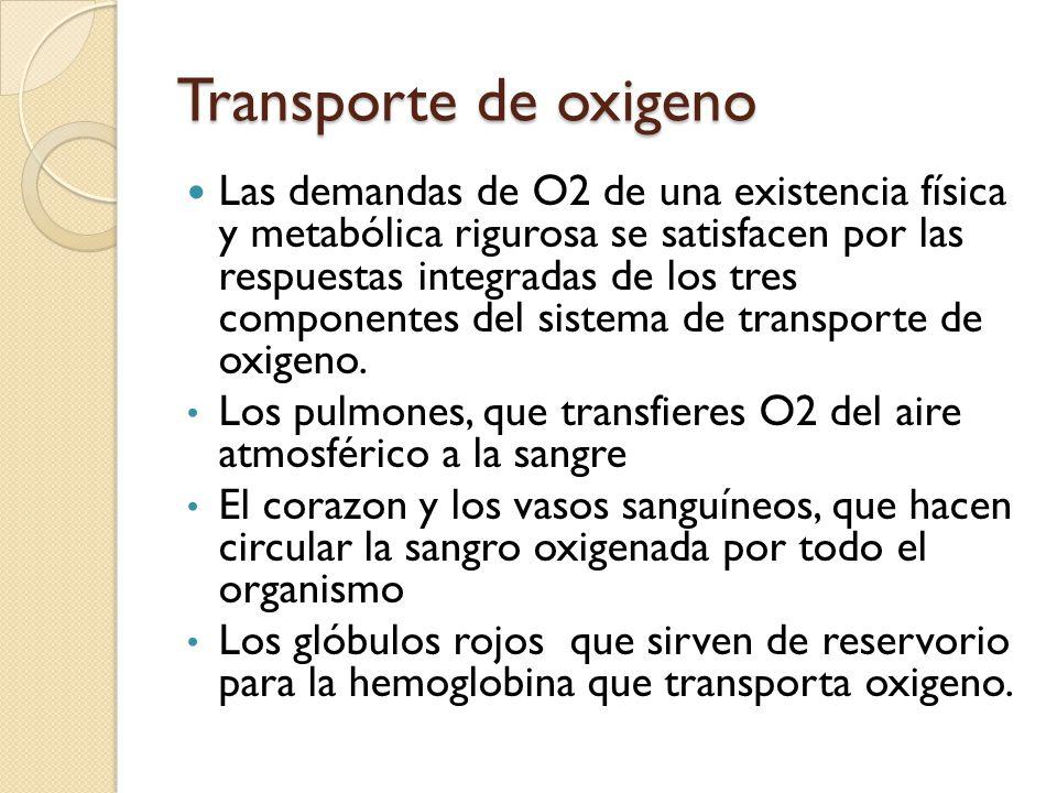 Transporte de oxigeno