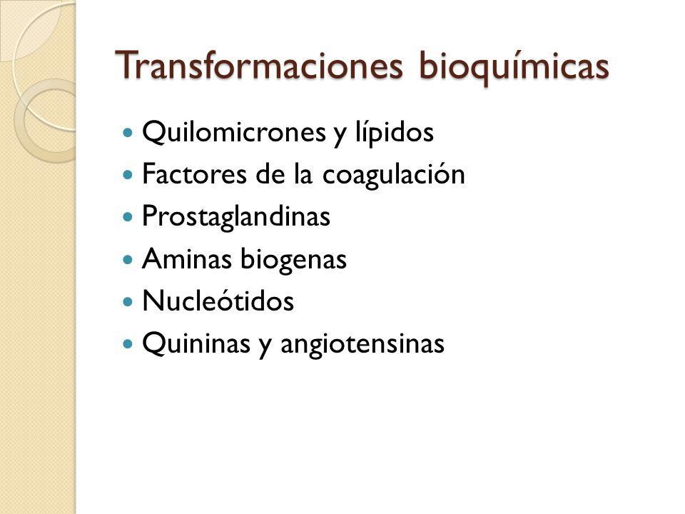 Transformaciones bioquímicas