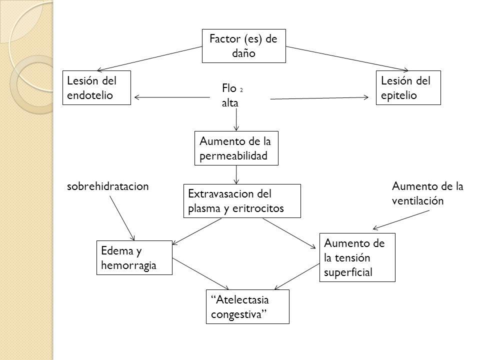 Factor (es) de daño Lesión del endotelio. Lesión del epitelio. Flo 2 alta. Aumento de la permeabilidad.