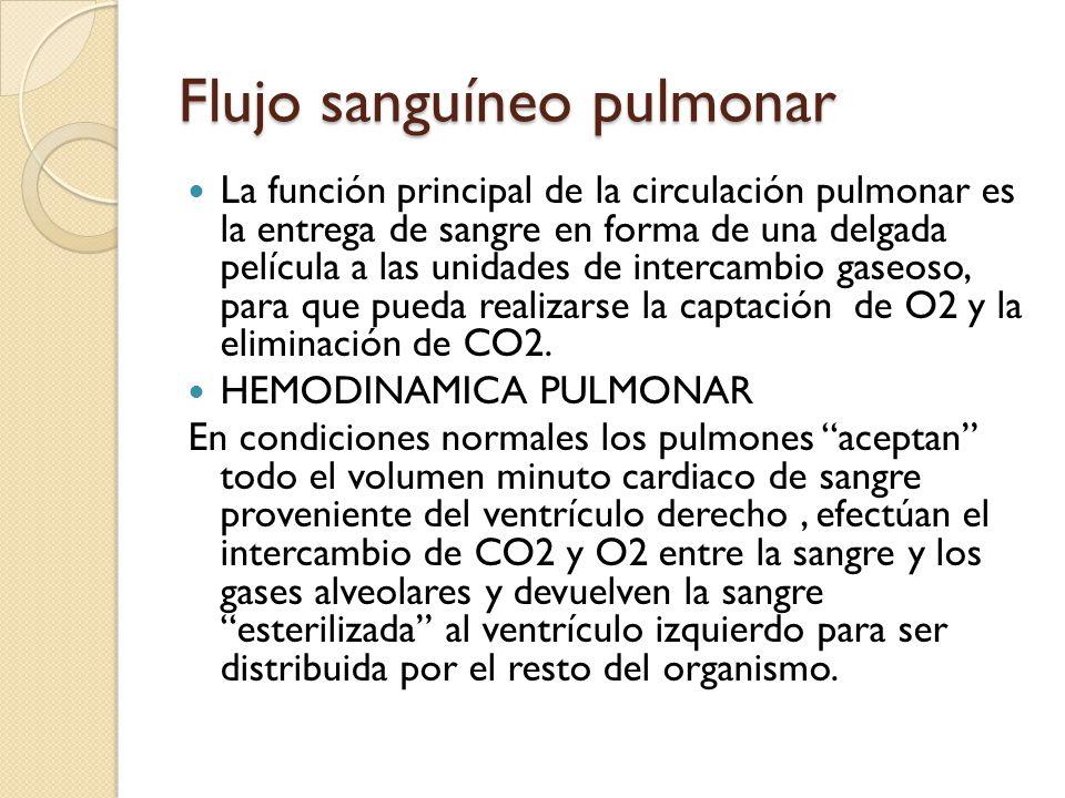 Flujo sanguíneo pulmonar