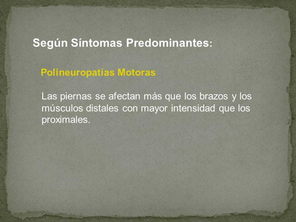 Según Síntomas Predominantes: