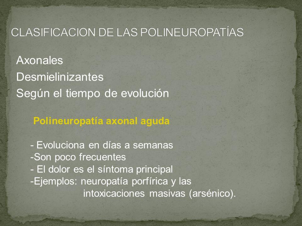 CLASIFICACION DE LAS POLINEUROPATÍAS