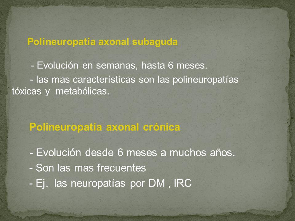 Polineuropatía axonal crónica - Evolución desde 6 meses a muchos años.