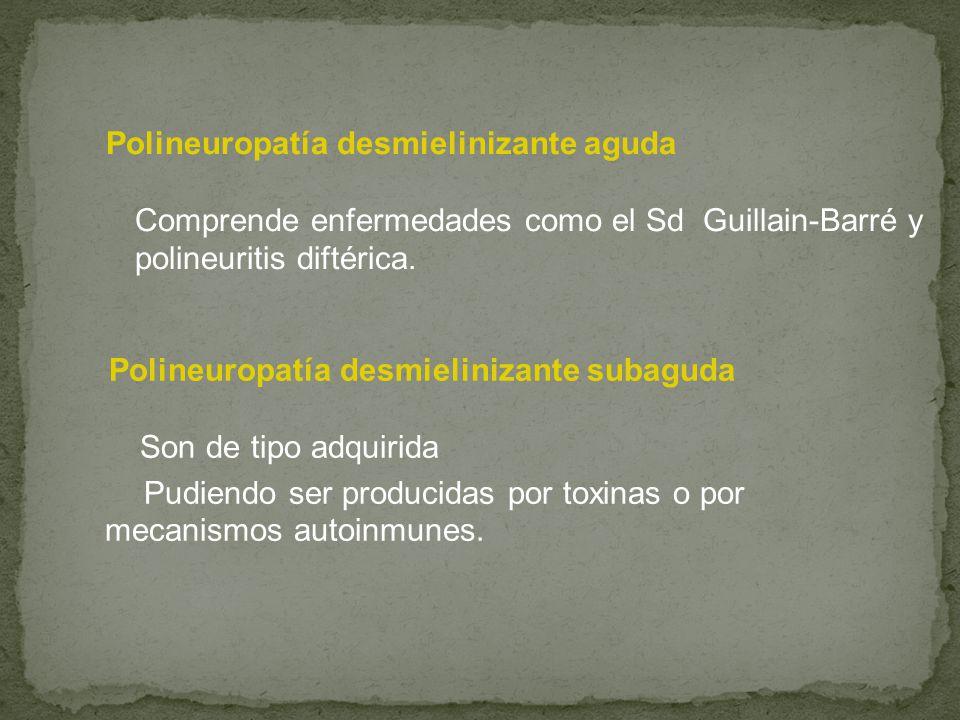 Polineuropatía desmielinizante aguda Comprende enfermedades como el Sd Guillain-Barré y polineuritis diftérica.