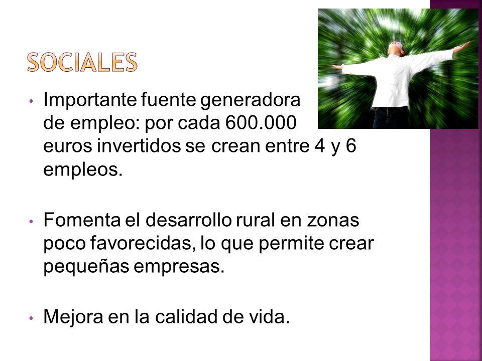 SOCIALES Importante fuente generadora de empleo: por cada 600.000 euros invertidos se crean entre 4 y 6 empleos.