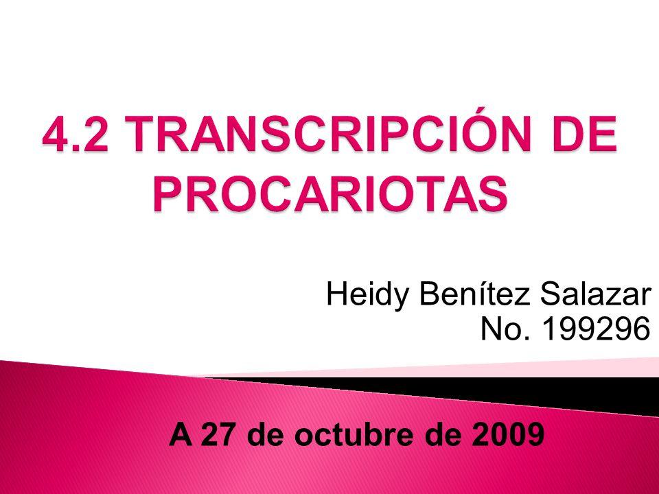 4.2 TRANSCRIPCIÓN DE PROCARIOTAS