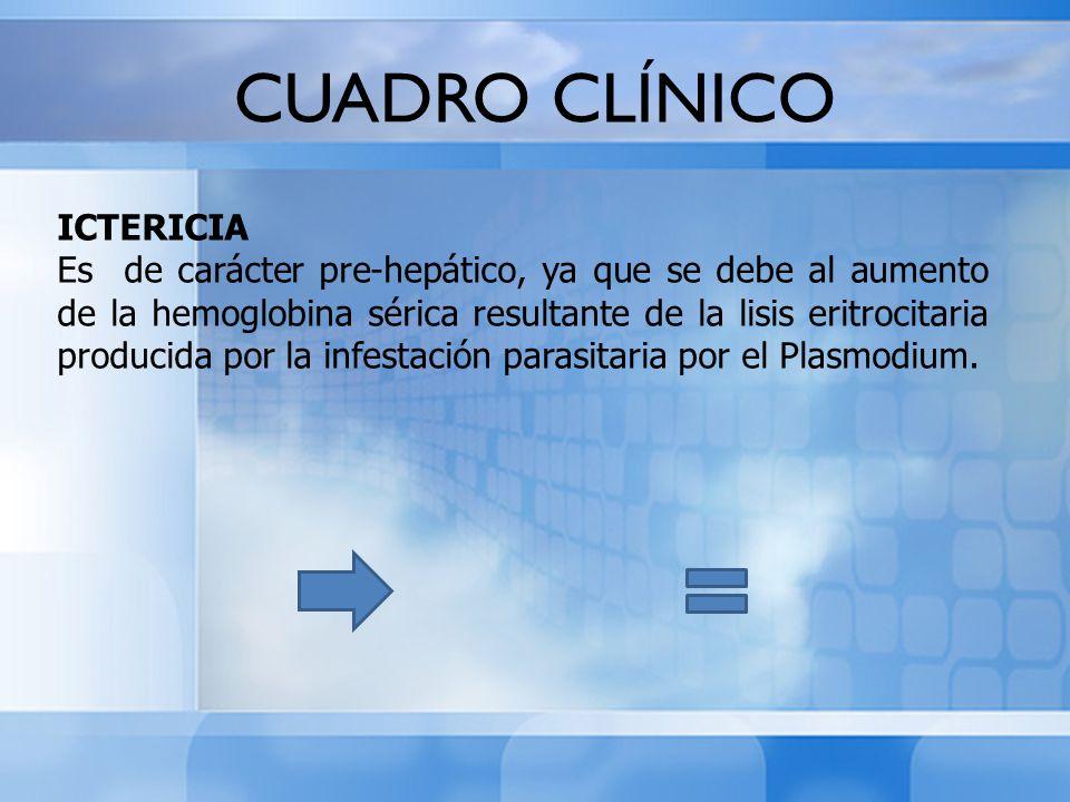 CUADRO CLÍNICO ICTERICIA