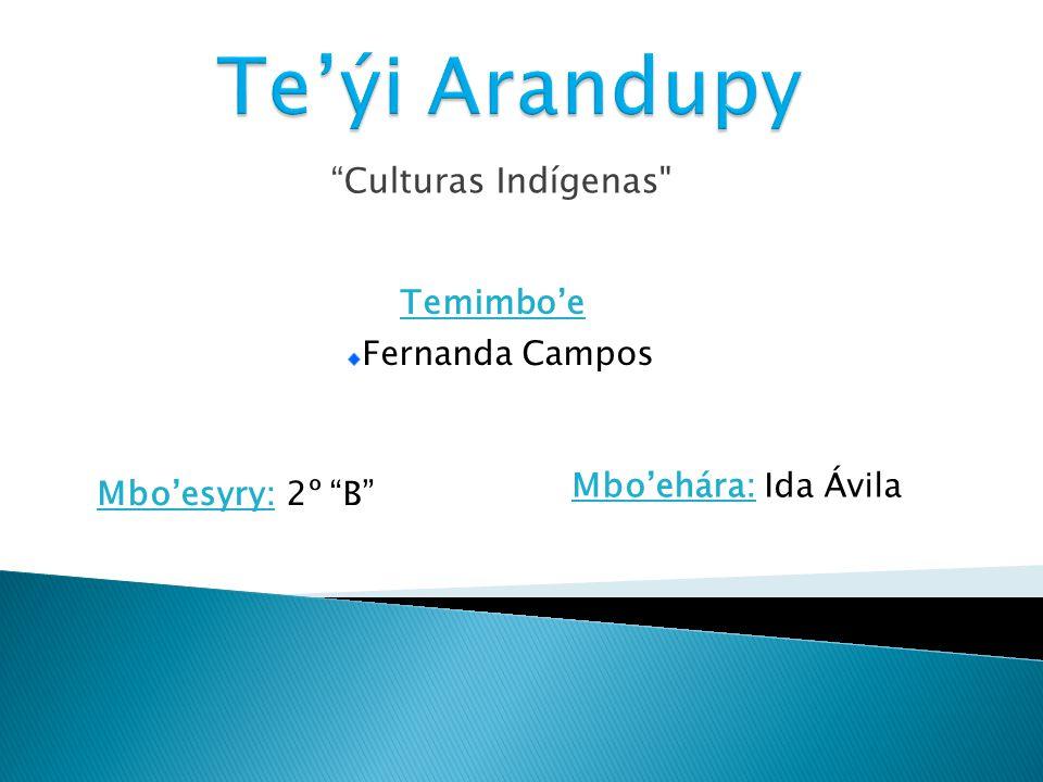 Te'ýi Arandupy Temimbo'e Culturas Indígenas Fernanda Campos