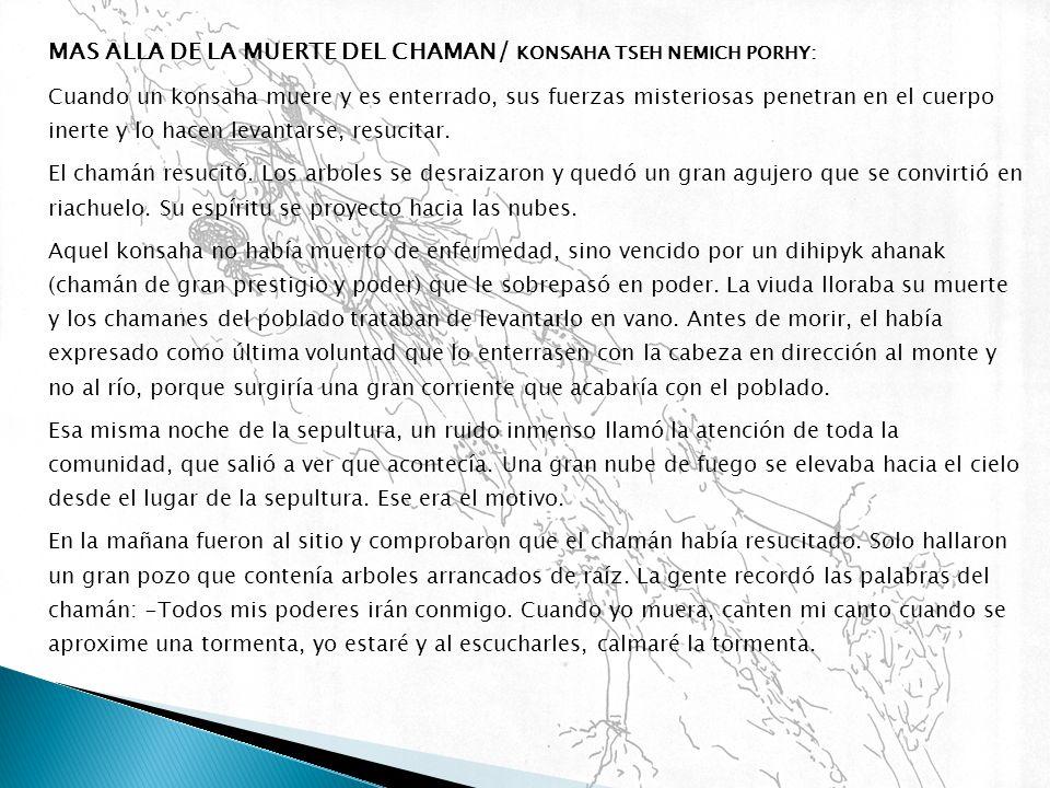 MAS ALLA DE LA MUERTE DEL CHAMAN/ KONSAHA TSEH NEMICH PORHY: