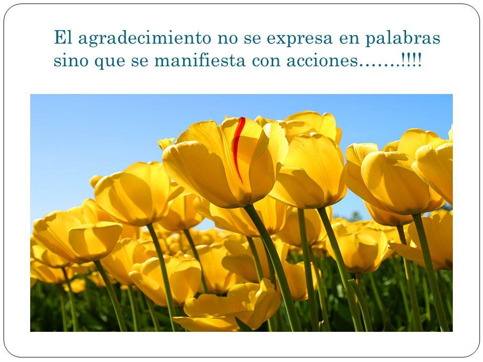 El agradecimiento no se expresa en palabras sino que se manifiesta con acciones…….!!!!