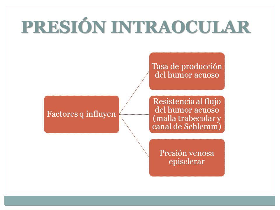 PRESIÓN INTRAOCULAR Factores q influyen