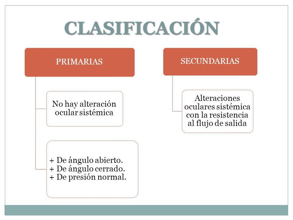 CLASIFICACIÓN PRIMARIAS SECUNDARIAS