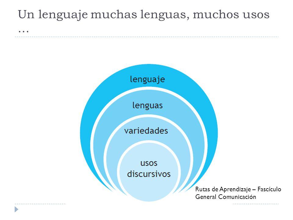 Un lenguaje muchas lenguas, muchos usos …