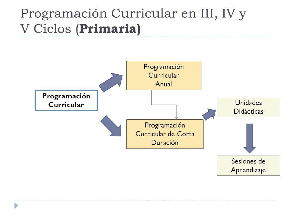 Programación Curricular en III, IV y V Ciclos (Primaria)