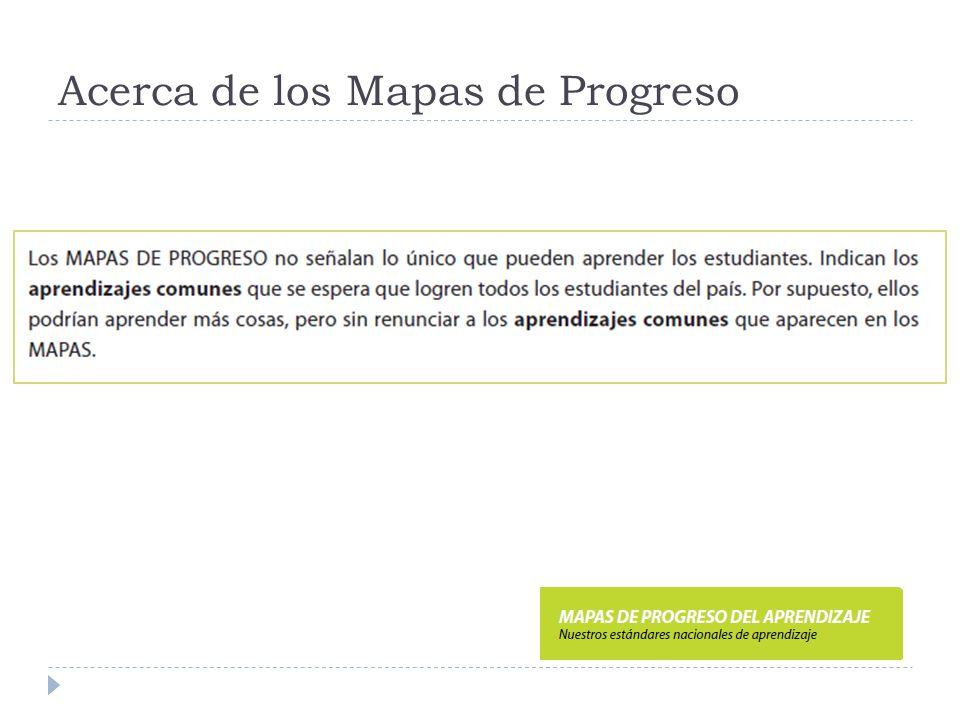 Acerca de los Mapas de Progreso