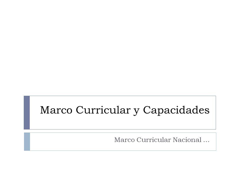 Marco Curricular y Capacidades