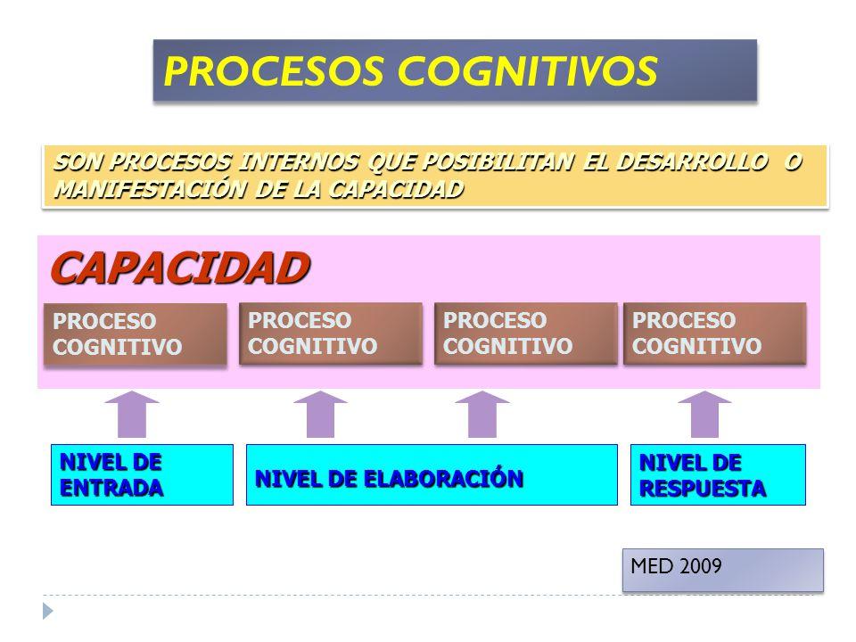 PROCESOS COGNITIVOS CAPACIDAD CAPACIDAD