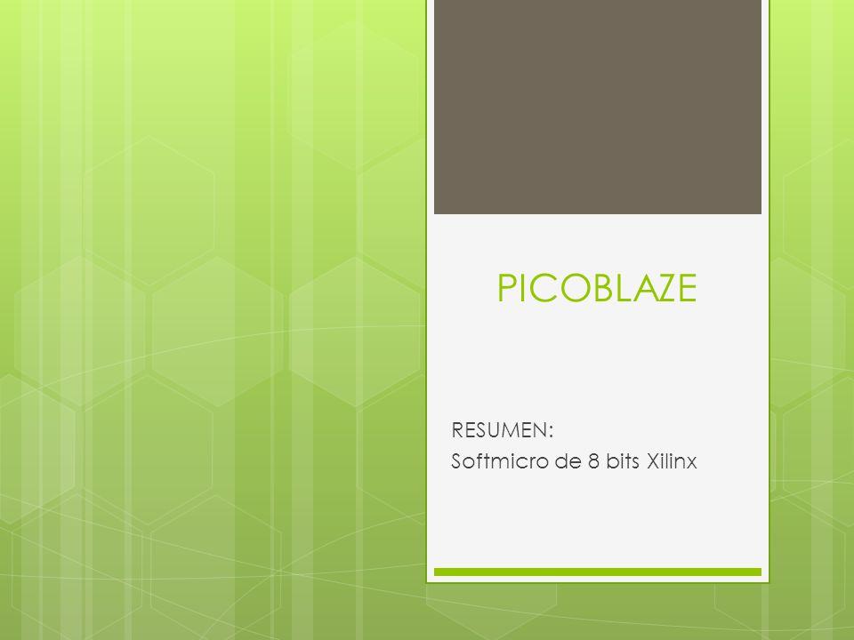 RESUMEN: Softmicro de 8 bits Xilinx