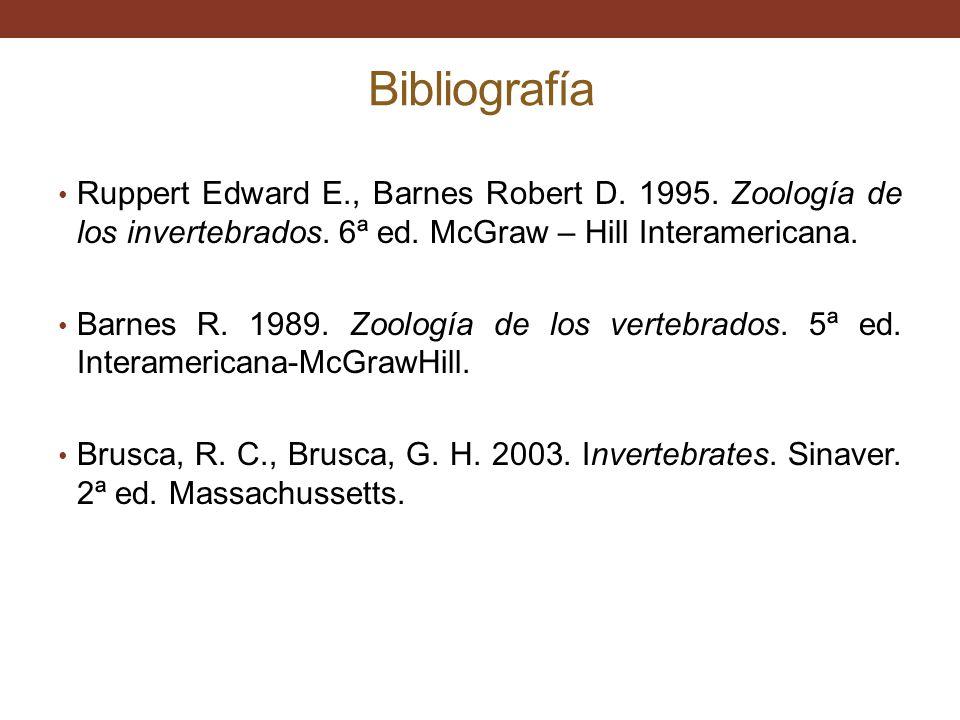 Bibliografía Ruppert Edward E., Barnes Robert D. 1995. Zoología de los invertebrados. 6ª ed. McGraw – Hill Interamericana.