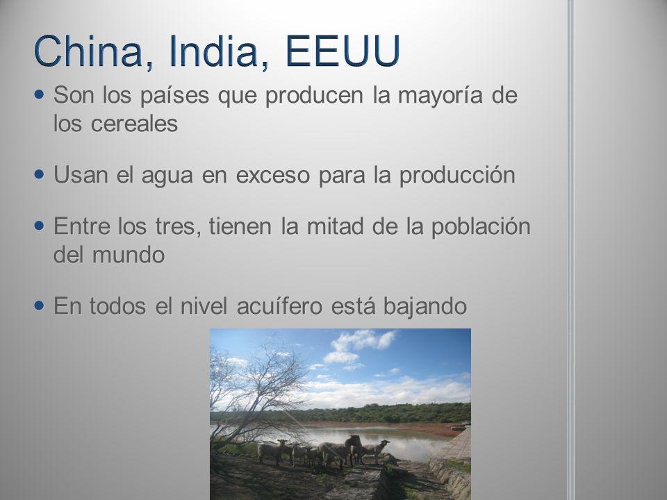 China, India, EEUU Son los países que producen la mayoría de los cereales. Usan el agua en exceso para la producción.