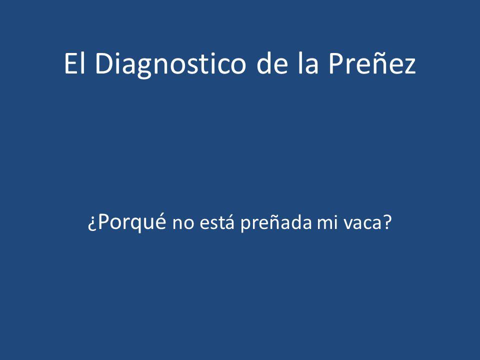 El Diagnostico de la Preñez