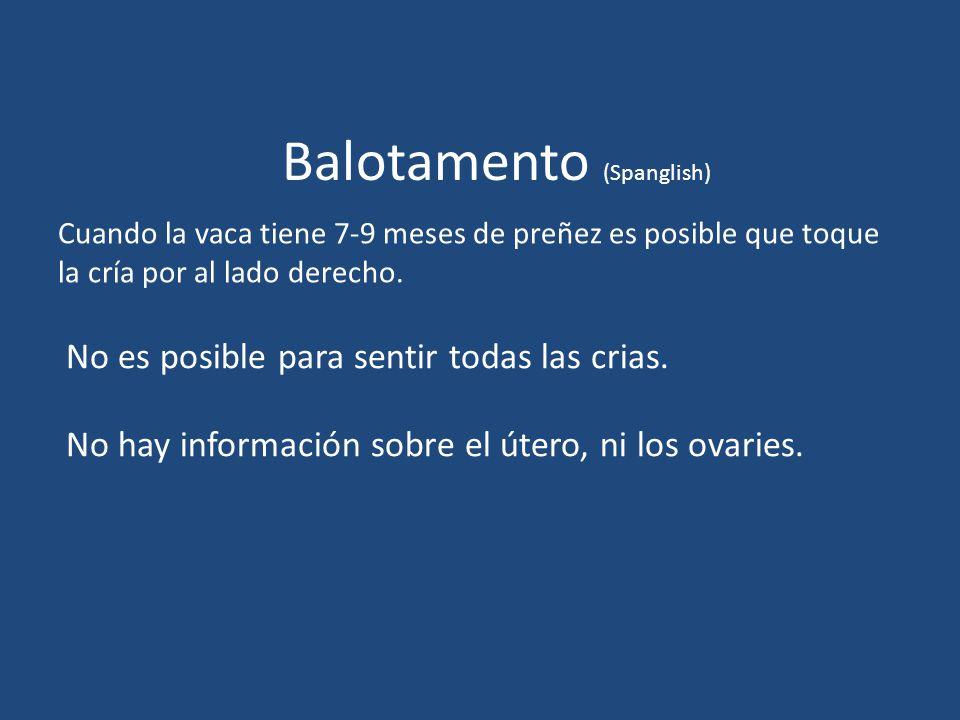 Balotamento (Spanglish)