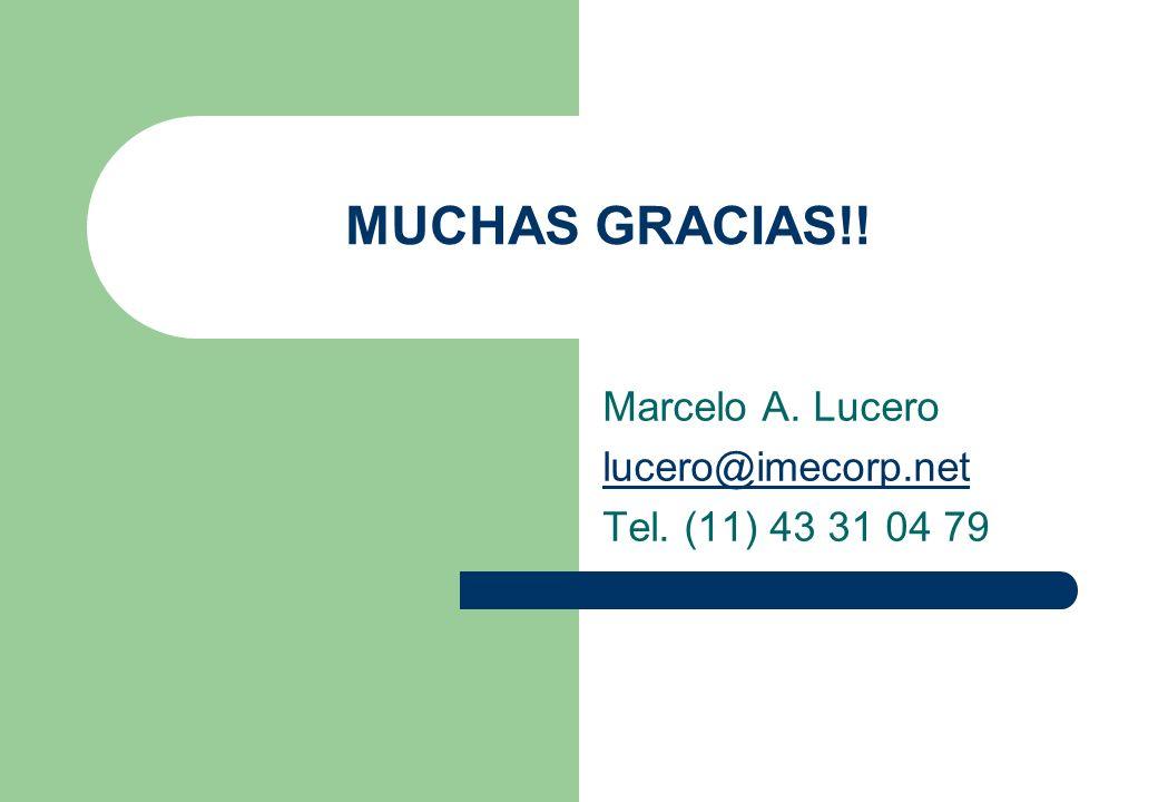 Marcelo A. Lucero lucero@imecorp.net Tel. (11) 43 31 04 79