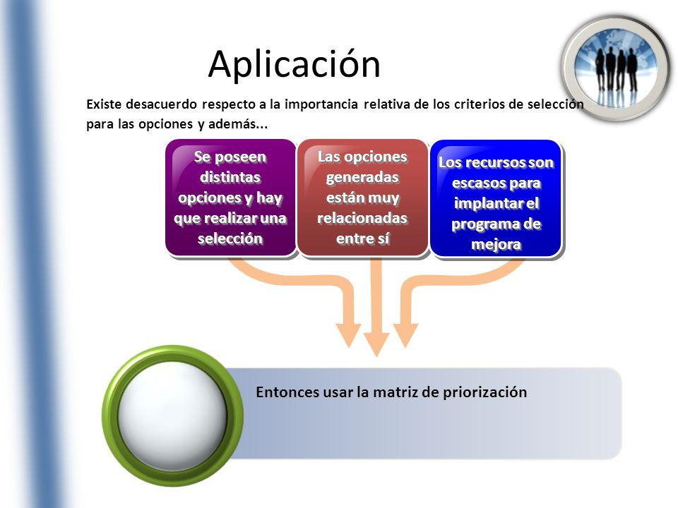 Aplicación Existe desacuerdo respecto a la importancia relativa de los criterios de selección para las opciones y además...