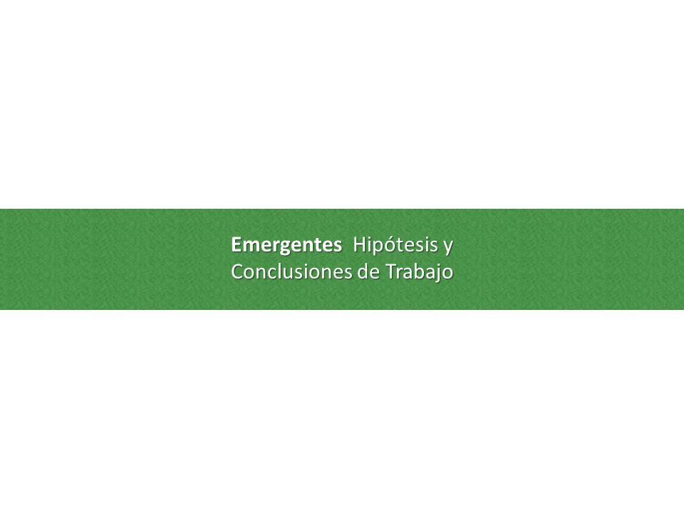 Emergentes Hipótesis y Conclusiones de Trabajo