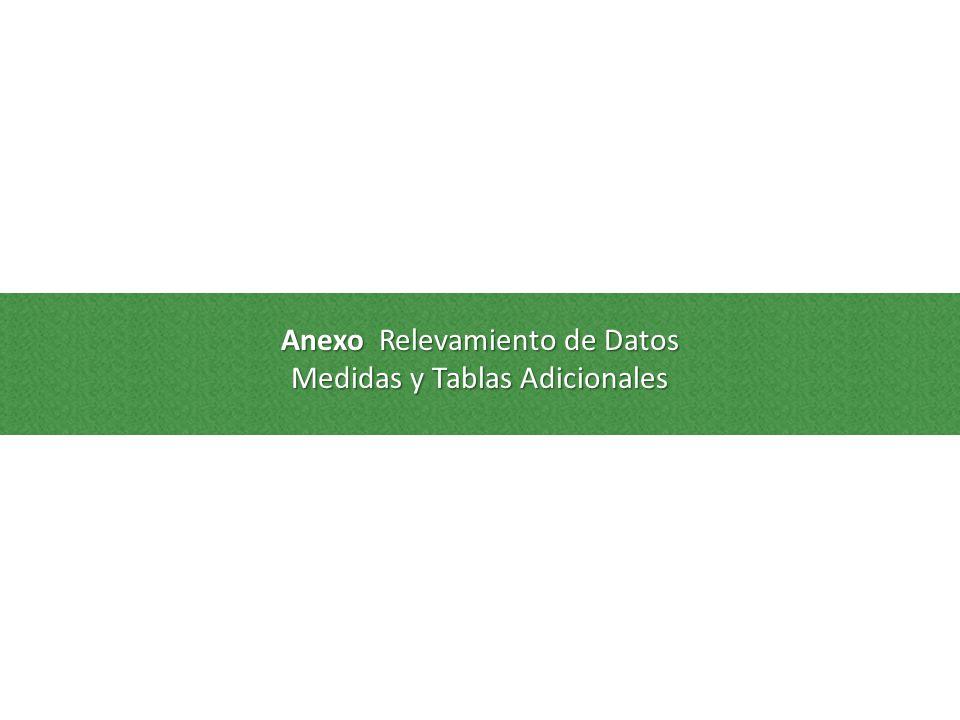 Anexo Relevamiento de Datos Medidas y Tablas Adicionales