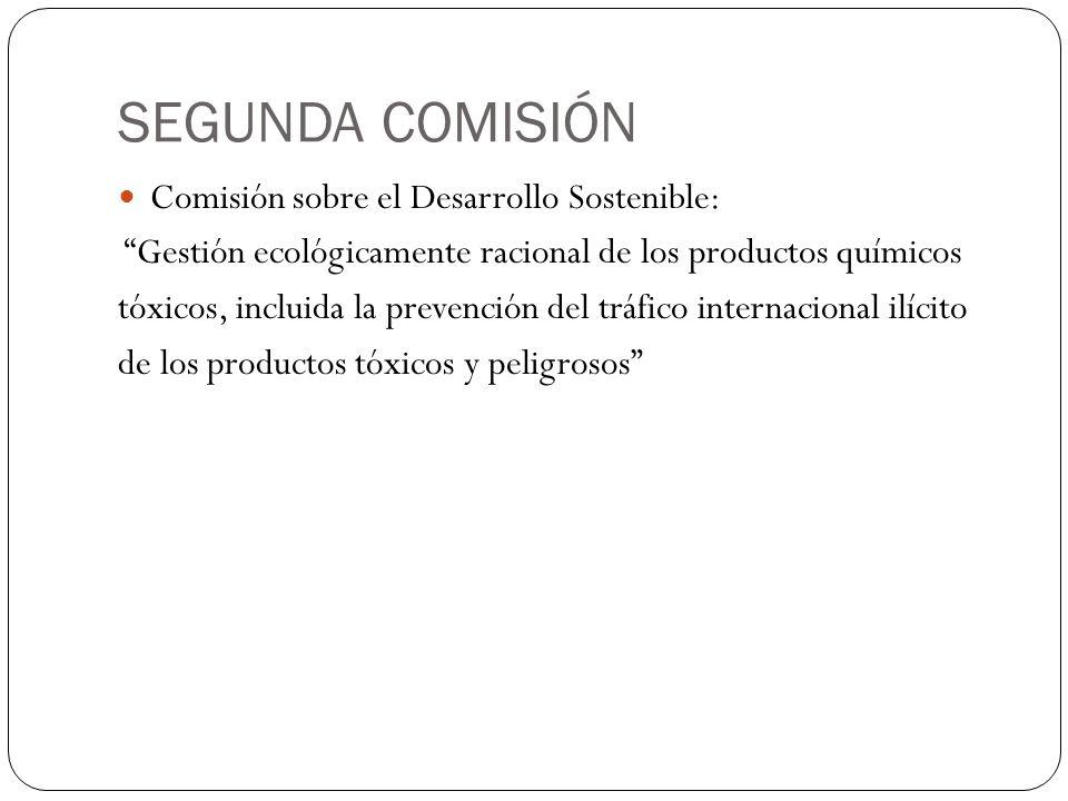 SEGUNDA COMISIÓN Comisión sobre el Desarrollo Sostenible: