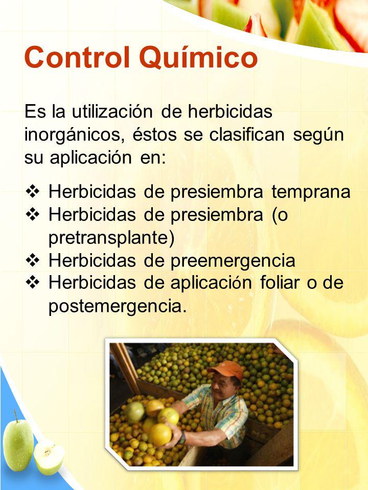 Control Químico Es la utilización de herbicidas inorgánicos, éstos se clasifican según su aplicación en: