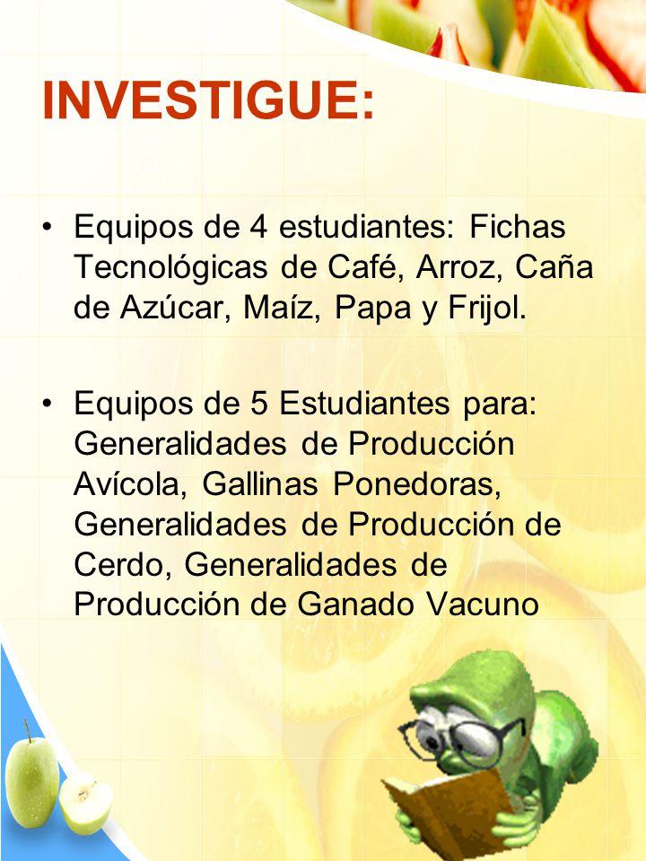 INVESTIGUE: Equipos de 4 estudiantes: Fichas Tecnológicas de Café, Arroz, Caña de Azúcar, Maíz, Papa y Frijol.