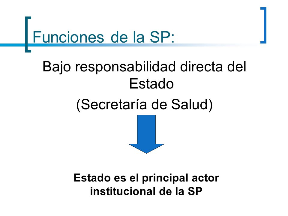 Estado es el principal actor institucional de la SP