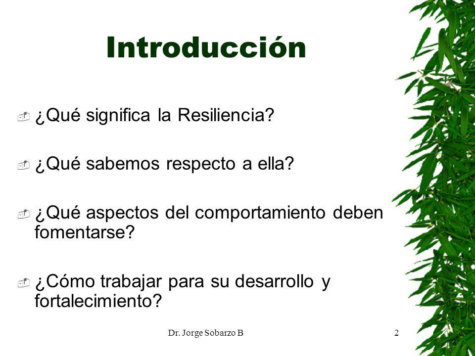 Introducción ¿Qué significa la Resiliencia